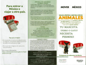 Mover México Senasica protege a nuestras especies - Para entrar a México o viajar a otro país, tu mascota (perro o gato) necesita permiso